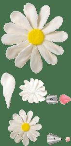 flor de betún real