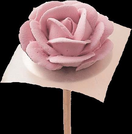 rosa Wilton